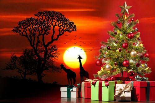 5 Christmas Traditions from the African Continent