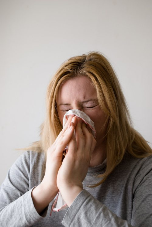 Putting Allergies to Bed by Changing Your Pillow