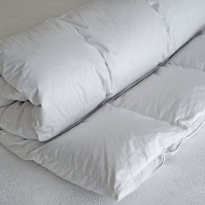 Duck Down Duvet Inner