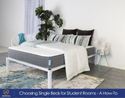 Choosing Single Beds for Student Rooms - A How-To