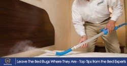 Leave The Bed Bugs Where They Are - Top Tips from the Bed Experts