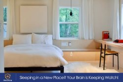 Sleeping in a New Place? Your Brain is Keeping Watch!