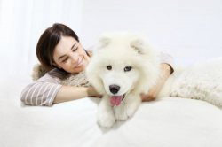 The Pros and Cons of Sharing Your Bed with Your Pets