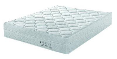 Genessi Vitality Pillow Top